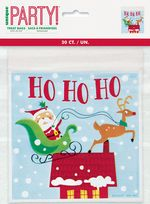 Colourful Santa Zip-Top Treat Bags (20)